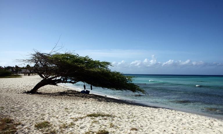 Sand beach, Aruba. Kilde: Pixabay.com